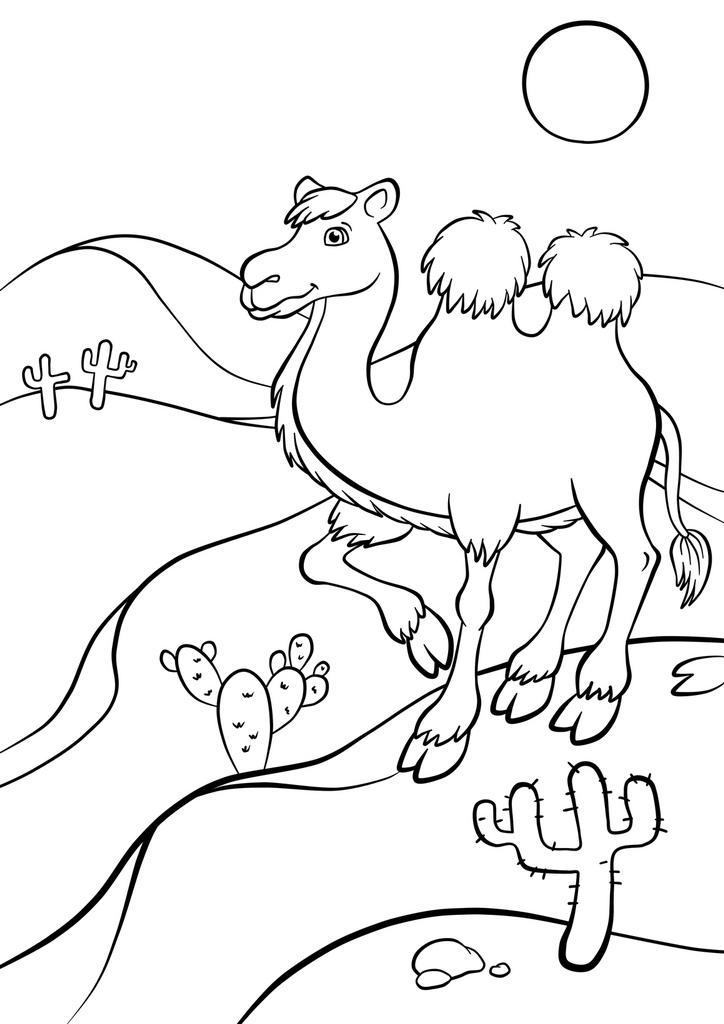 Camel Canvas Print Pluscanvas