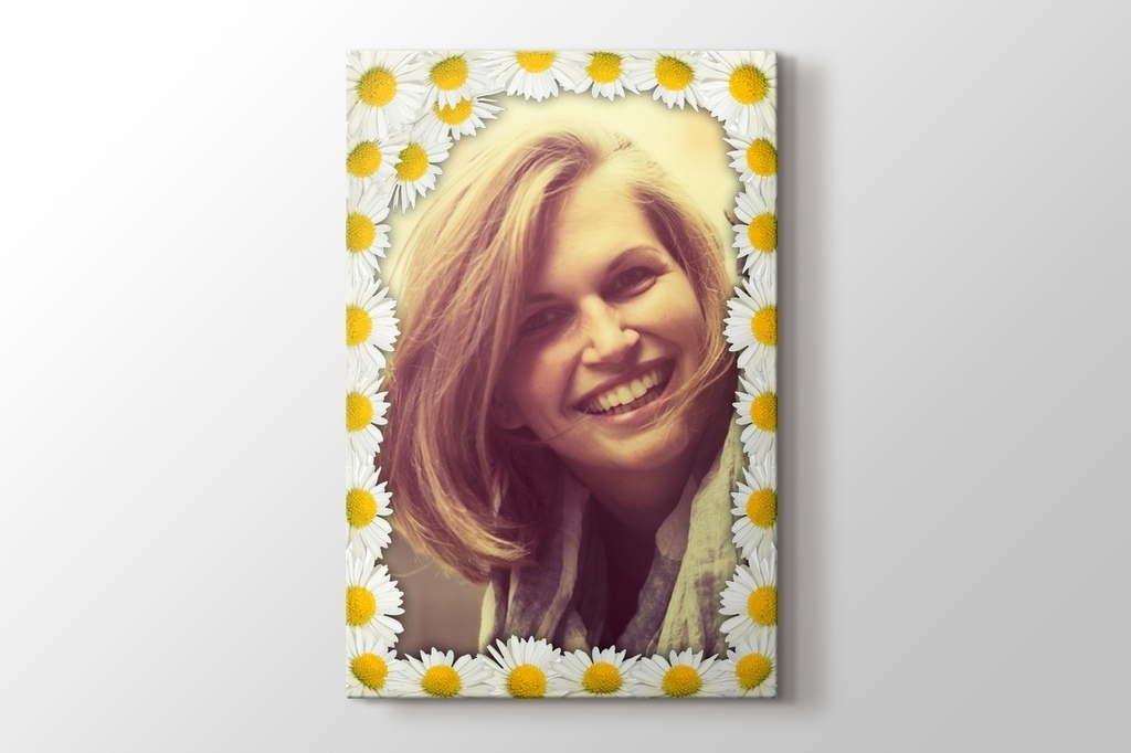 Picture of Daisies Photo on Canvas