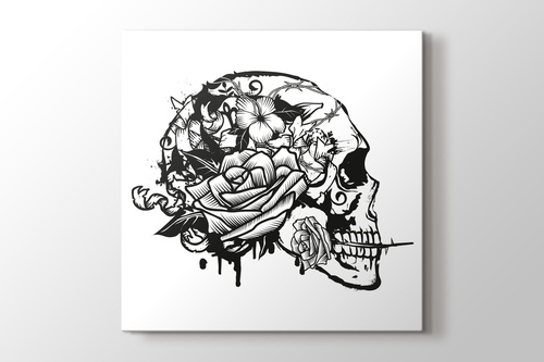 Picture of Skull