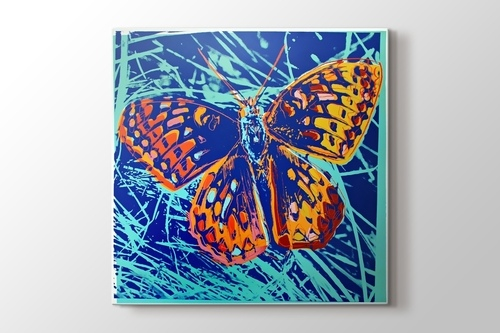 Picture of Silverspot Butterfly