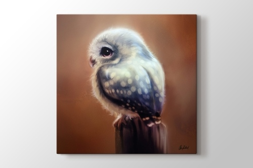 Picture of Blue Owl