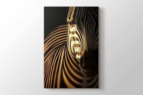 Picture of Zebra CloseUp