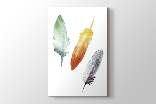 Picture of Coloured Feathers