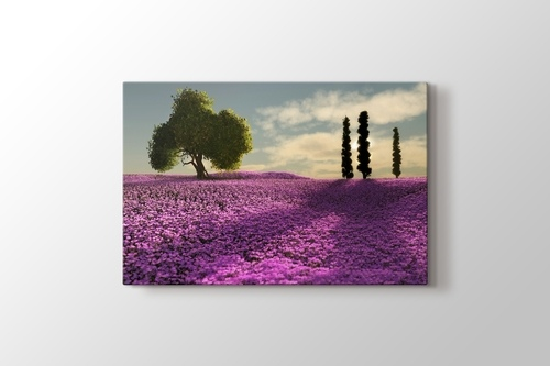 Picture of Trees and Lavender Field