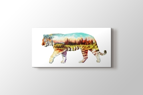 Picture of Tiger Nature