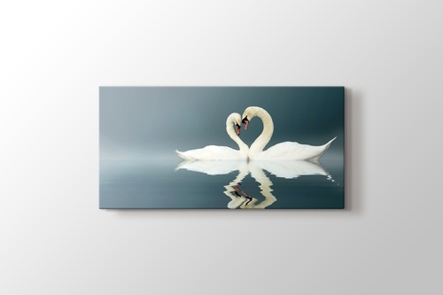 Picture of Swans