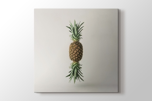 Picture of Pineapple Clone