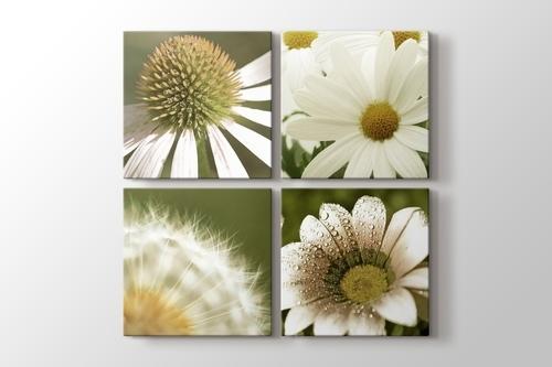 Picture of Quattro Flowers