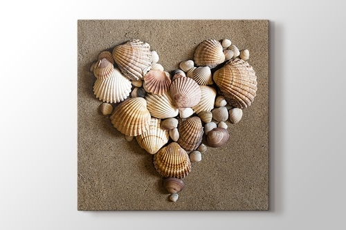 Picture of Heart Shaped Sea Shells