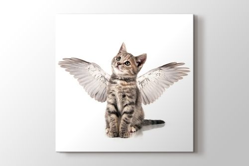 Picture of Angel Cat