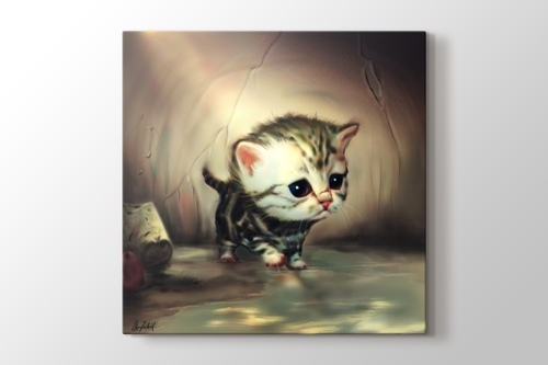 Picture of Little Cat