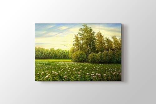 Picture of Flower and Trees