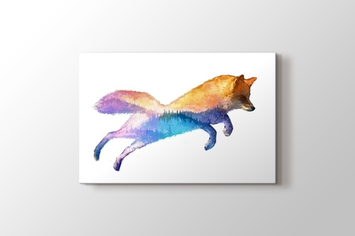 Picture of Fox Nature