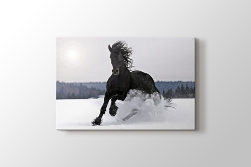 Picture of Strong Black
