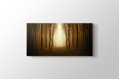 Picture of Golden Forest