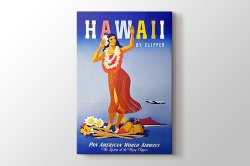 Picture of Hawaii Vintage