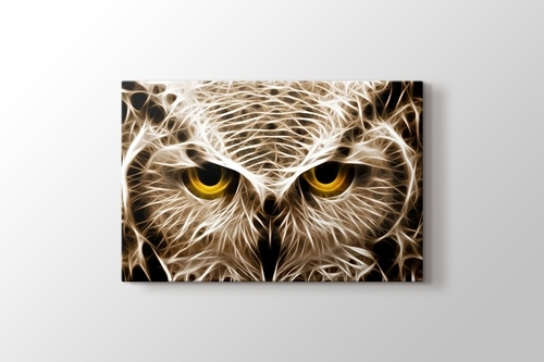 Picture of CloseUp Owl