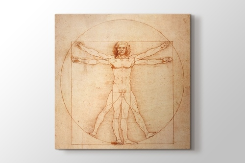 Picture of Vitruvian Man