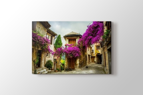 Picture of Provence - France