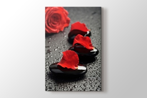 Picture of Black Pebbles and Red Rose