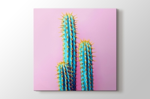 Picture of Cactus on Pink