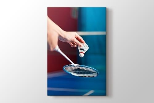 Picture of Badminton