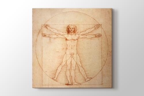Picture of Vitruvian Man