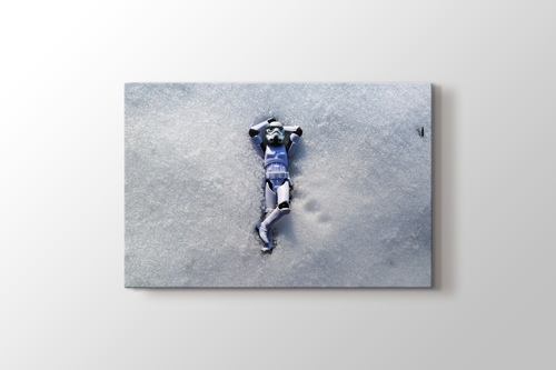 Picture of Snow Trooper