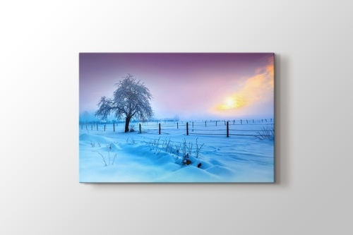Picture of Snow and Tree