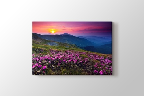 Picture of Mountain Landscape