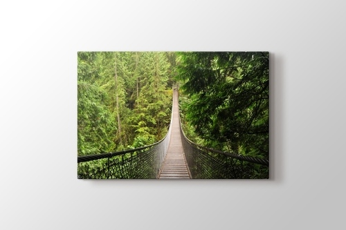 Picture of Bridge in the Forest