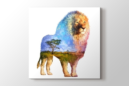 Picture of Lion Nature