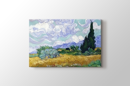 Picture of Oat Field with Cypress