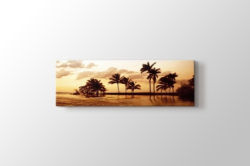 Picture of Palms and Ocean