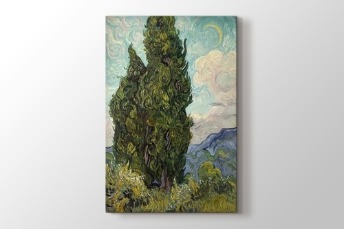 Picture of Cypresses