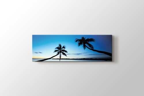 Picture of Palms