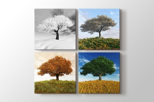 Picture of Four Seasons