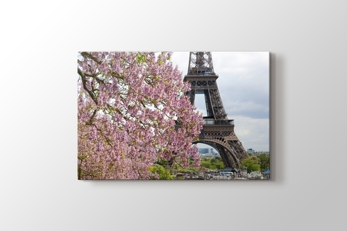 Picture of Eiffel Behind a Tree