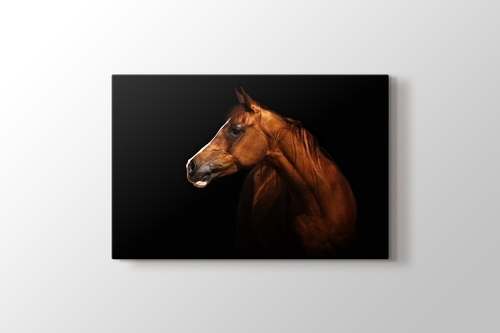 Picture of Brown Horse