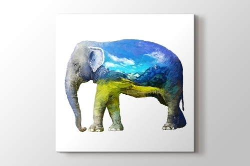 Picture of Elephant Nature