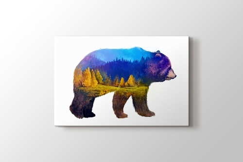 Picture of Bear Nature