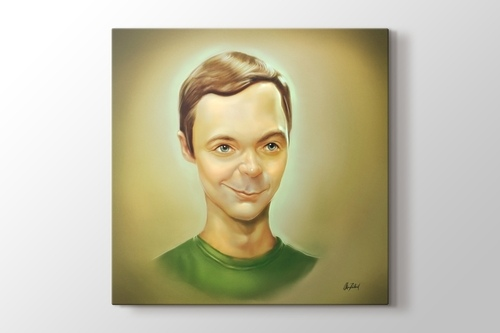 Picture of Sheldon Cooper