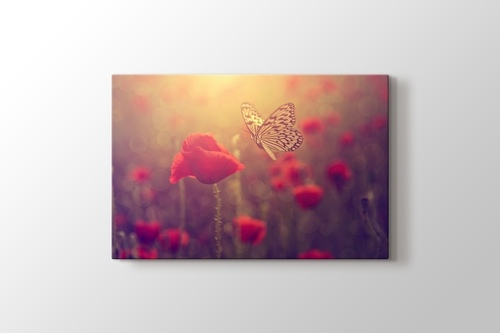 Picture of Poppy and Butterfly