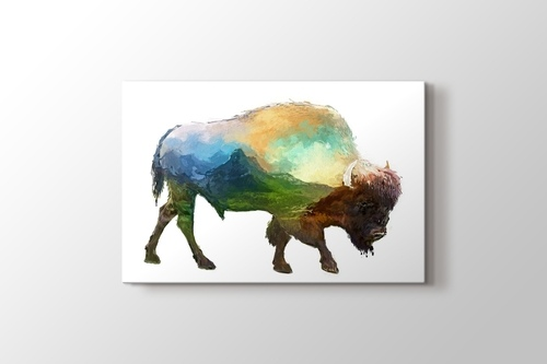 Picture of Bison Nature