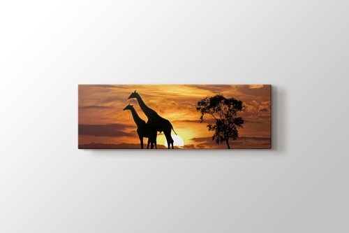 Picture of Giraffes and the Sunset