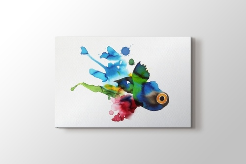 Picture of Colorful Fish