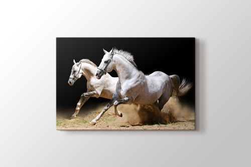 Picture of White Horses