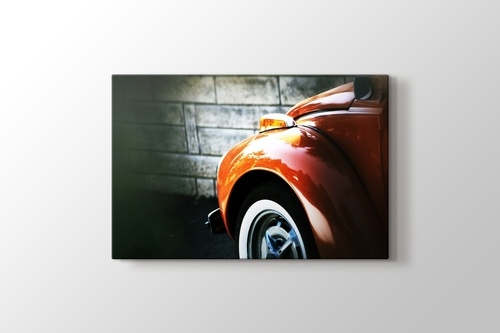 Picture of Beetle