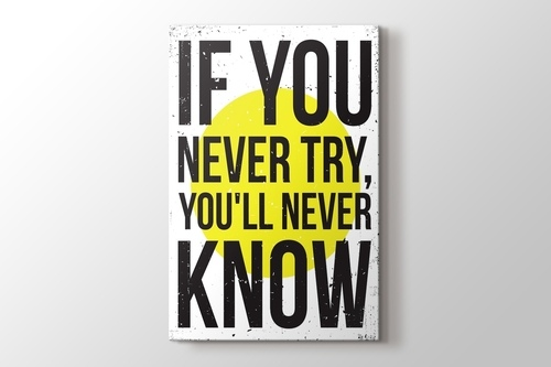 Picture of Never Try Never Know