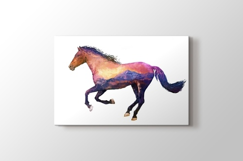 Picture of Horse Nature